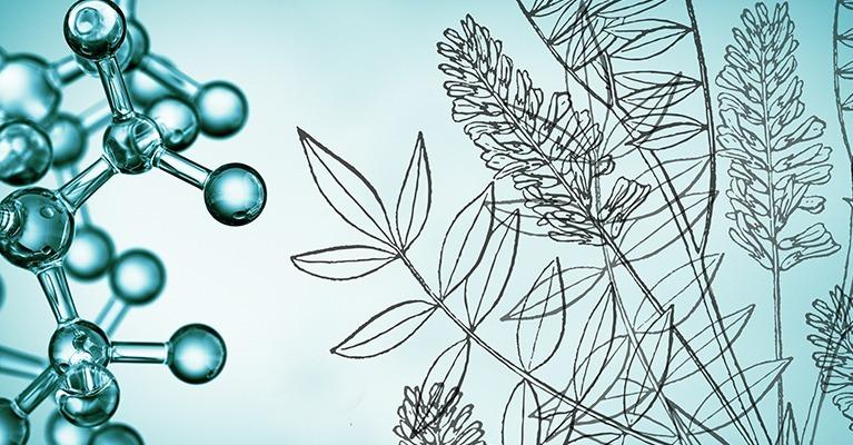 Dermafora Hautpflegelösungen
